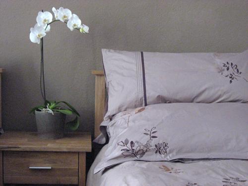 bett_nachtschrank_orchidee_500px